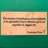 On-mesure-l-intelligence-particulier